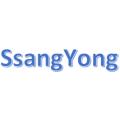 SsangYong beépítőkeretek és kiegészítők